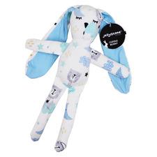 2 Piece Sleeping Bear & Tan Jellies Bunny Teether Gift Set
