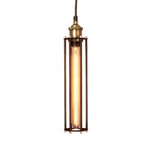 Black Industrial Cage Pendant Light with Brass Fittings