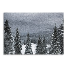 Bavarian Winter's Tale I Print