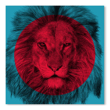 Wild 2 Printed Wall Art