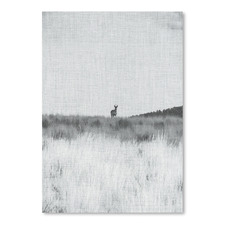 Prairie Shadows Printed Wall Art