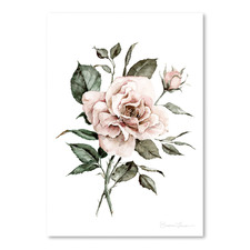 Faded Pink Rose Printed Wall Art