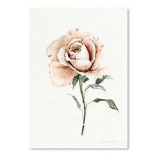 Single Peach Rose Printed Wall Art