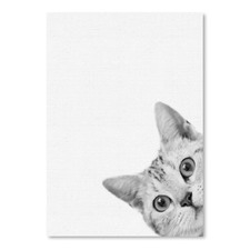 Cat Printed Wall Art
