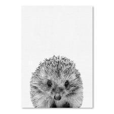 Hedgehog Printed Wall Art