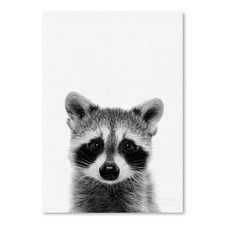 Raccoon Printed Wall Art