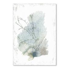 Teal Delicate Coral II Printed Wall Art
