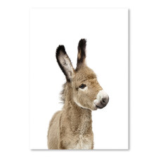 Little Donkey Printed Wall Art