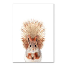 Little Squirrel Printed Wall Art