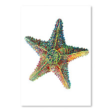 Sea Star Printed Wall Art