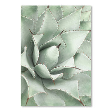 Agave Printed Wall Art