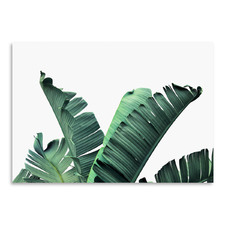 Banana Leaves Printed Wall Art
