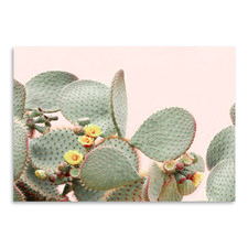 Blooming Cactus Printed Wall Art