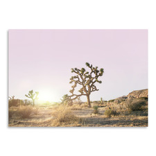 Desert Tree Printed Wall Art