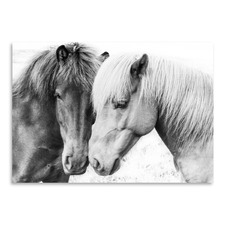 Horse Love Printed Wall Art