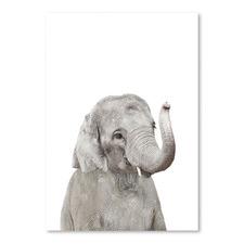 Little Elephant Printed Wall Art