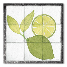 Citrus Tile VII Black Border Printed Wall Art