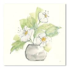 Plant Poppy I Printed Wall Art