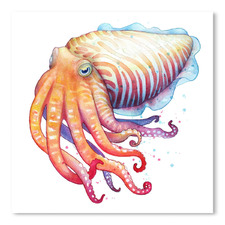 Cuttlefish I Square Printed Wall Art