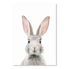 Bunny Face Printed Wall Art