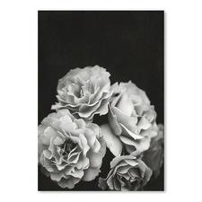 Moody Roses Printed Wall Art