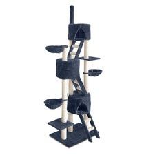 Multi Level Cat Activity Tree