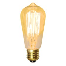 Vintage 25W E27 Squirrel Cage Filament Lamp (Set of 2)