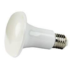 R80 LED Lamp (Set of 2)