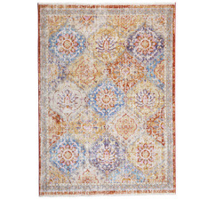 Multi-Coloured Trogney Distressed Rug