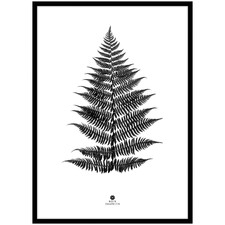 Large Fern Framed Printed Wall Art
