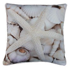 1 Star Whitsunday Outdoor Cushion