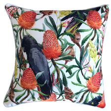 Bottle Brush Bird Outdoor Cushion
