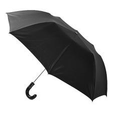 RAIN1010