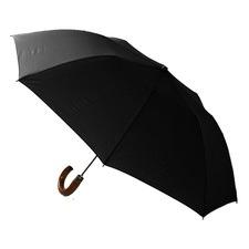 RAIN1011