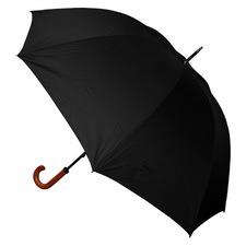 RAIN1030