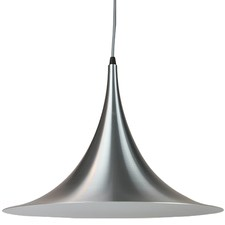 SIlver Iole Pendant Light