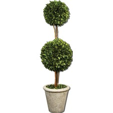 Preserved Boxwood Two Sphere Botanical Topiary
