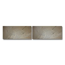 2 Piece Abstract Canvas Painting Set