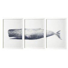 Whale Print Triptych Wall Art Set