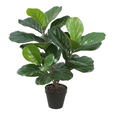 Potted Faux Fiddle-Leaf Fig Plant