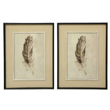 Feather Framed Printed Wall Art (Set of 2)