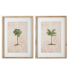2 Piece Palm Trees Framed Printed Wall Art Set