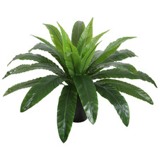 55cm Potted Faux Bird's Nest Fern
