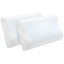 Gel-Infused Memory Foam Contour Pillows (Set of 2)