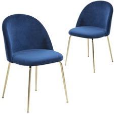 Gold Leg Velvet Dining Chair (Set of 2)