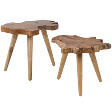 2 Piece Talus Teak Side Table Set (Set of 2)