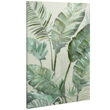 Rainforest Stretched Canvas Wall Art