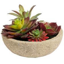 13cm Potted Faux Succulent Plant