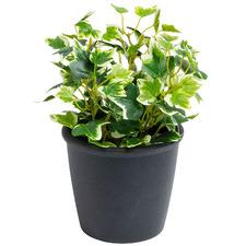22cm Potted Faux Ivy Plant