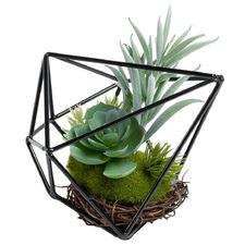 13cm Faux Tree Houseleek Plant in Terrarium Pot